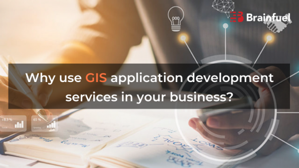 Why use GIS application development services in your business?