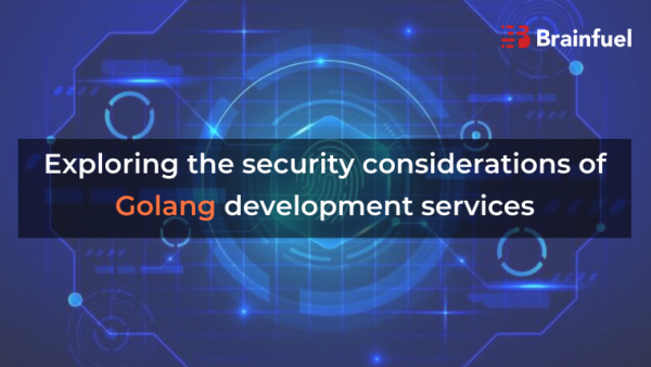 Exploring the security considerations of Golang development services